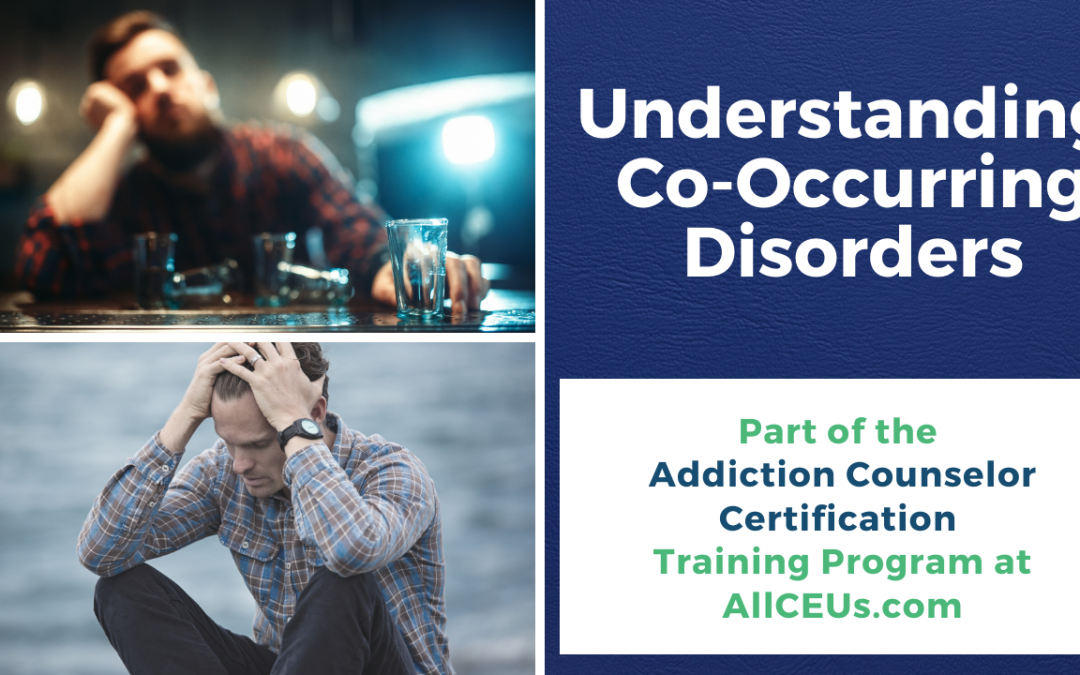 Effects of Co Occurring Disorders Addiction Counselor Certification with Dr. Dawn-Elise Snipes