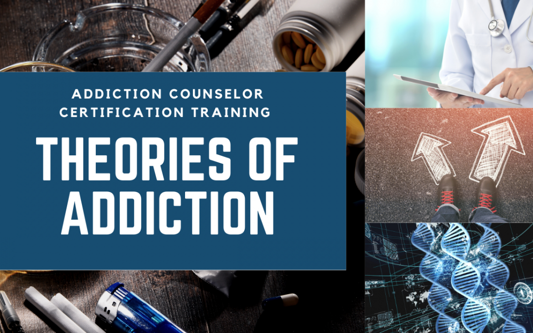Models and Theories Live Addiction Counselor Certification Training at AllCEUs