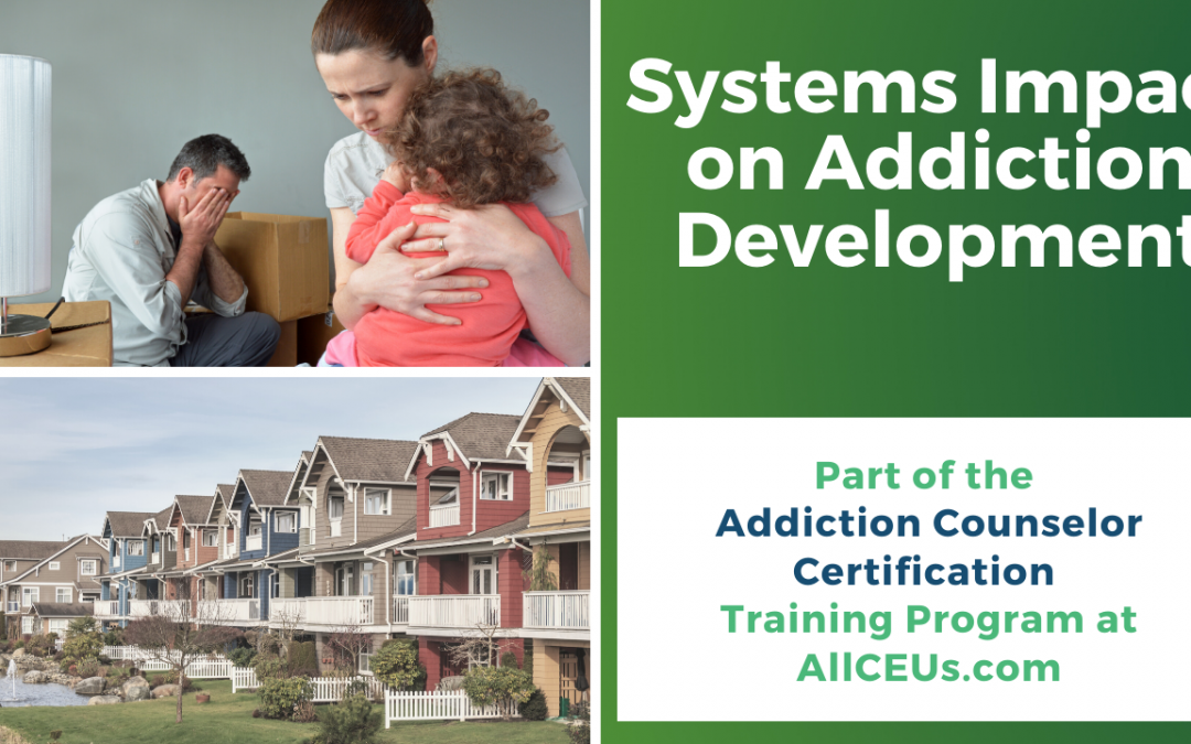 Systems Impact on Mood and Addictive Disorders for Addiction Counselors -Dr. Dawn-Elise Snipes