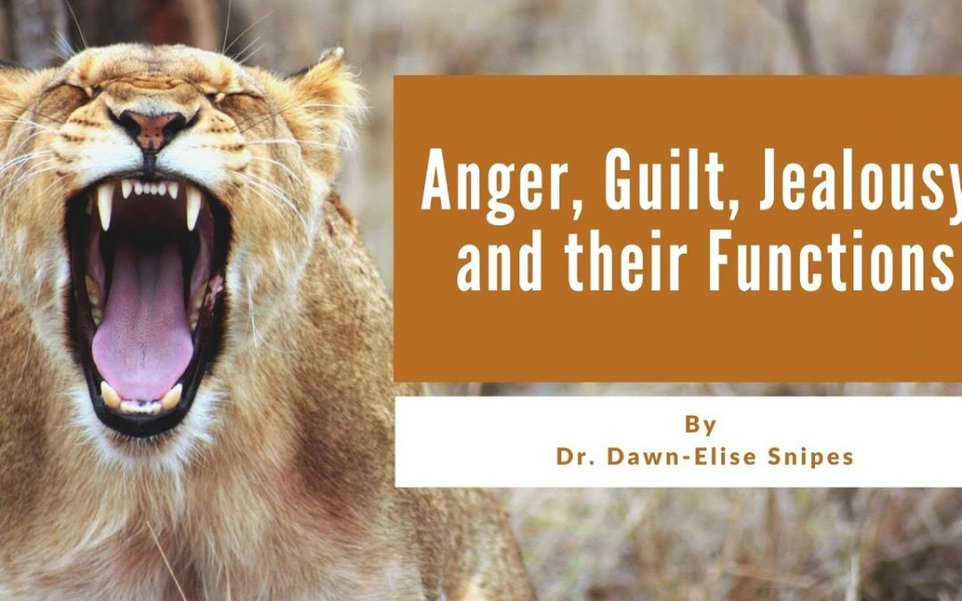 Relationship Skills: Anger, Guilt, Jealousy, and Their Impact and Interventions