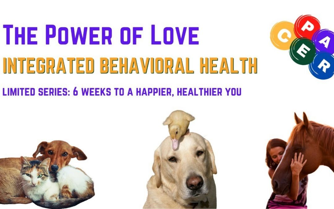 The Power of Love: 6 Weeks to a Happier, Healthier You