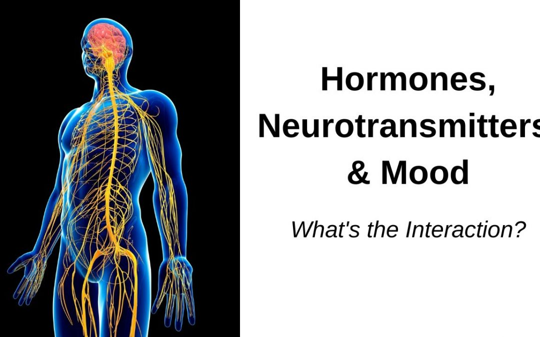 Interactions of Hormones and Neurotransmitters