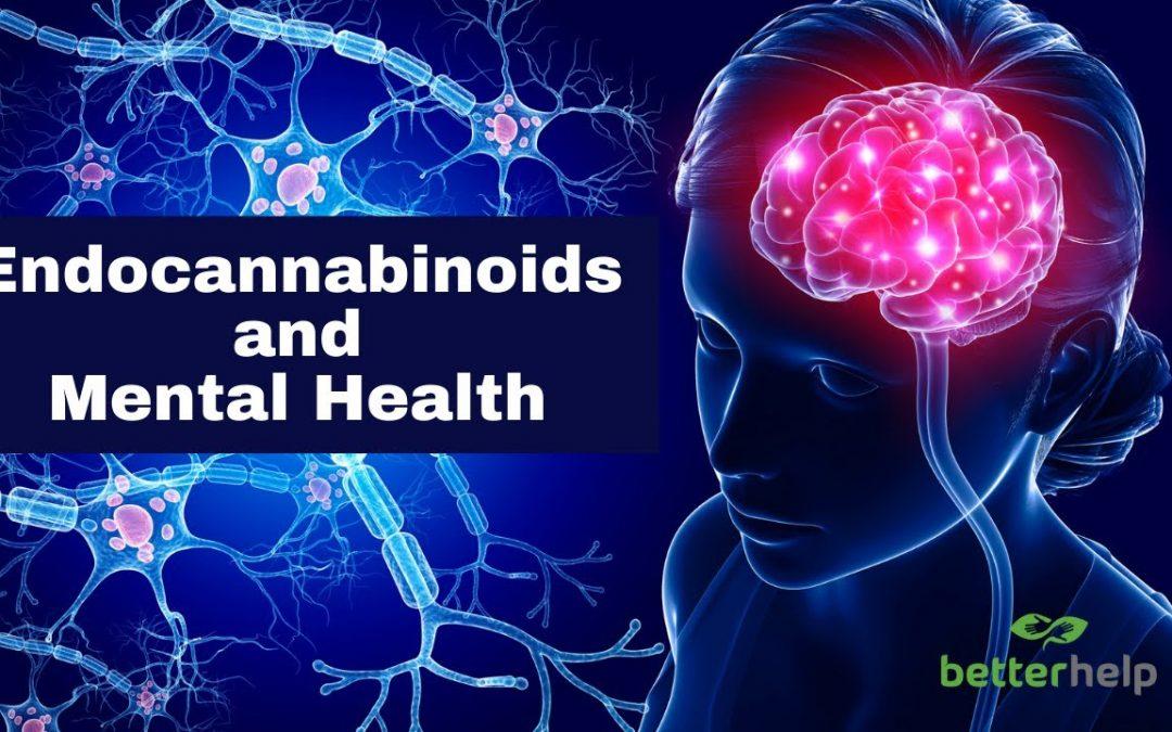 Endocannabinoids and Mental Health