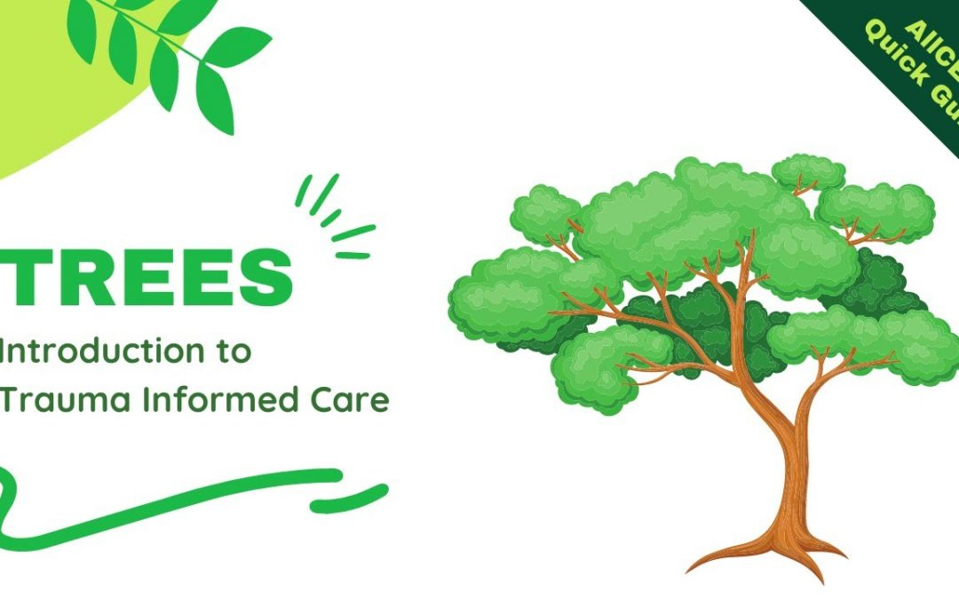 TREES An Introduction to Trauma Informed Care