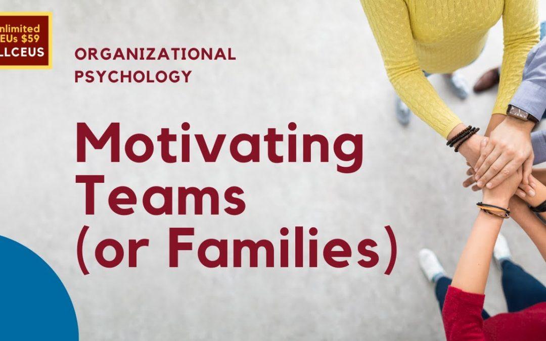 Motivating Teams: Organizational Psychology